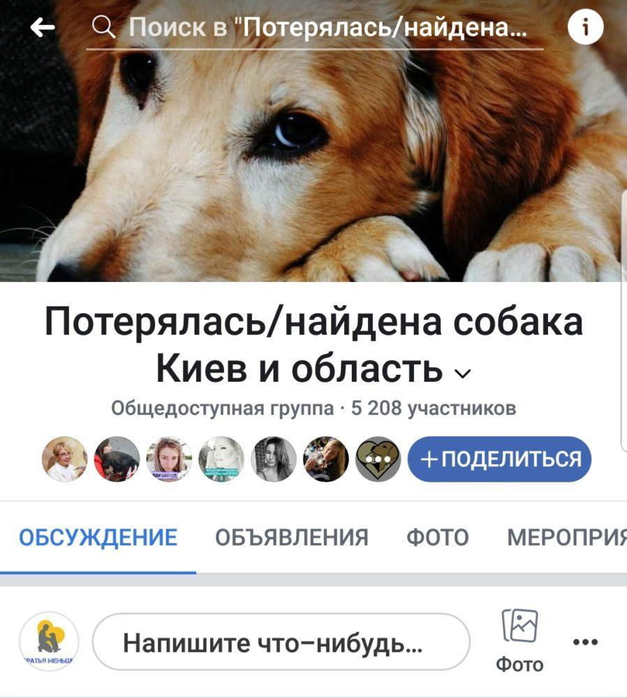 whatsapp image 2018 12 16 at 12.30.29